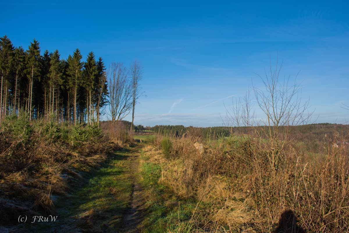 Bierweg (125)