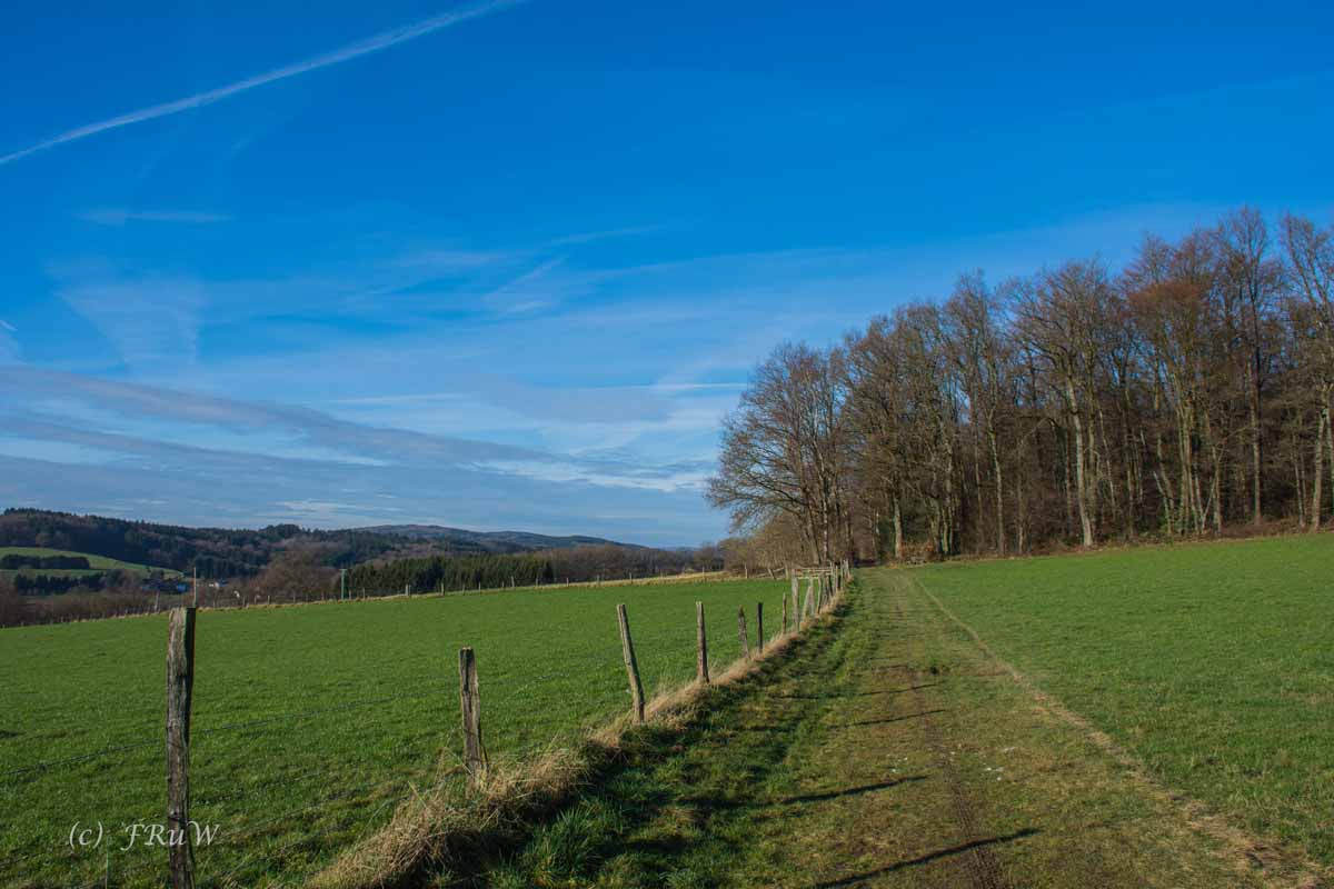 Bierweg (177)