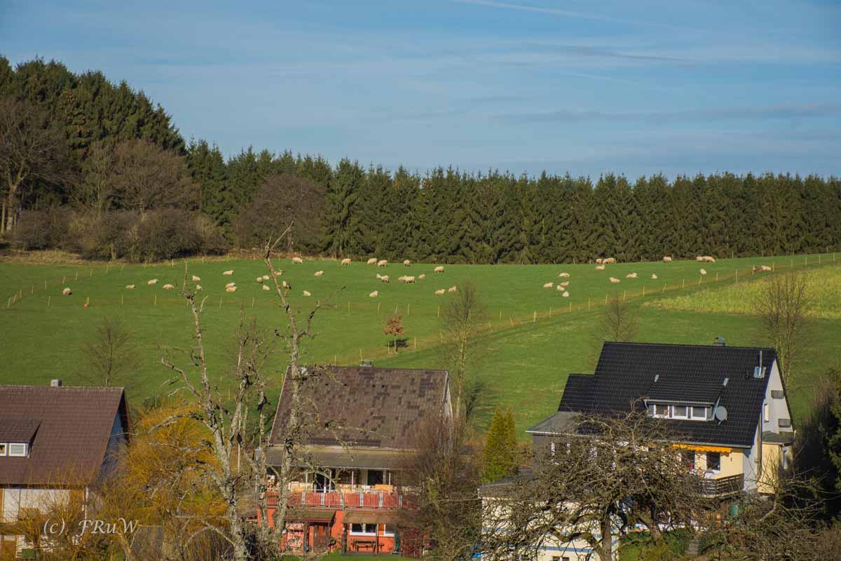Bierweg (197)