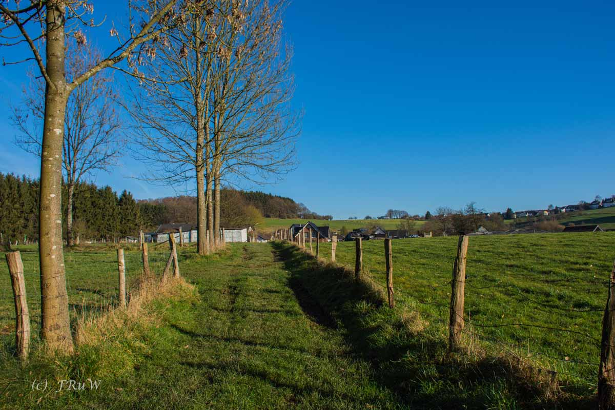 Bierweg (207)