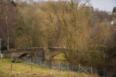 Blick auf die Alte Steinbrücke