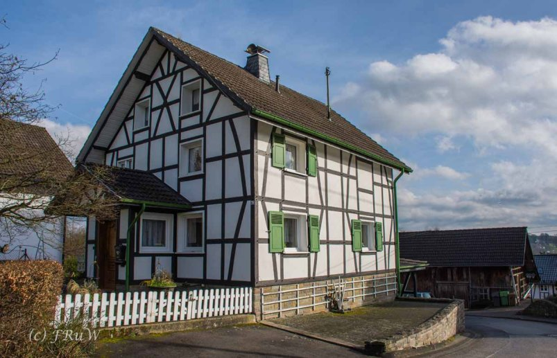 Waldmythenweg (125)