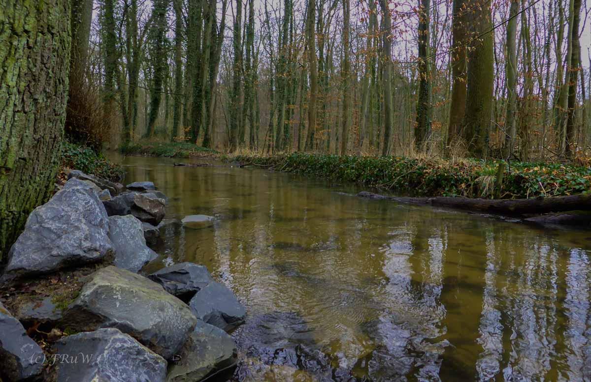 Wildpark_HoehenfelderSee_DellbrueckerHeide (35)