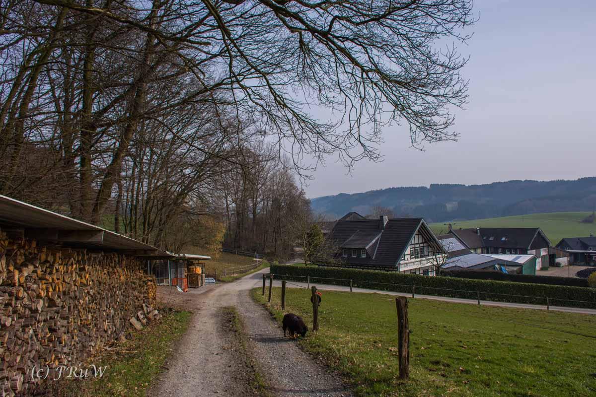 Kulturlandschaftsweg (175)