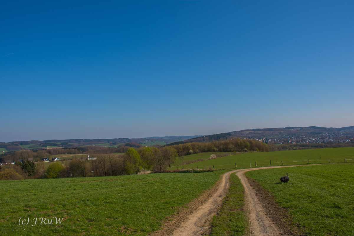 Suelzbahnsteig (6)