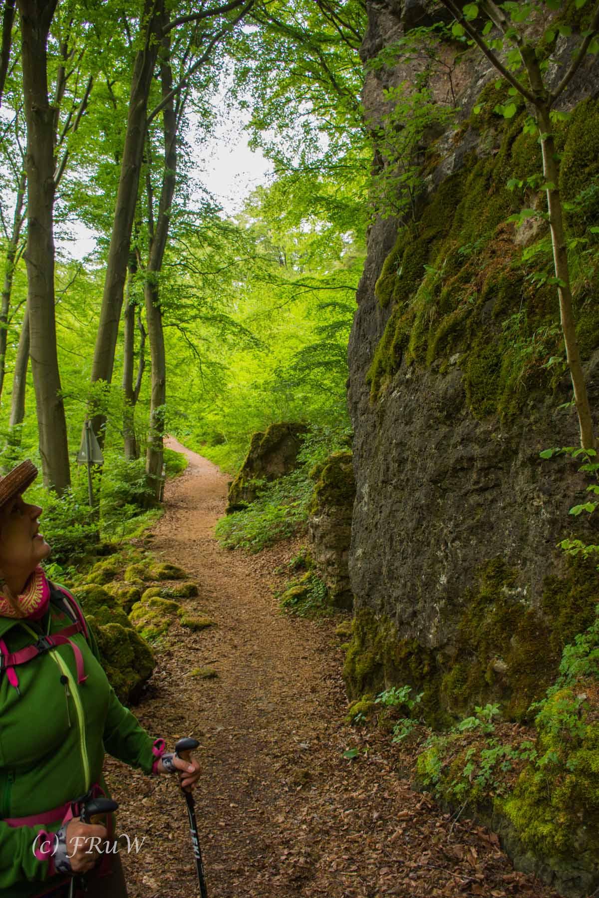 Gerolsteiner Felsenweg (104)