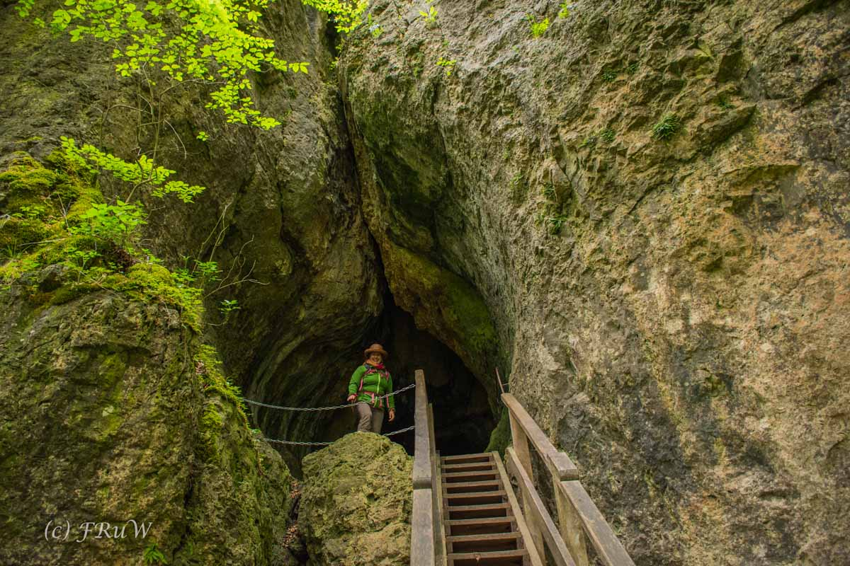 Gerolsteiner Felsenweg (110)