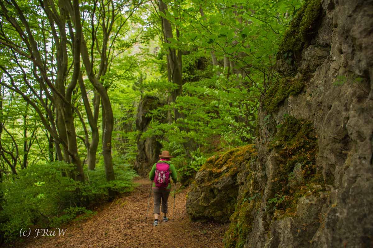 Gerolsteiner Felsenweg (148)