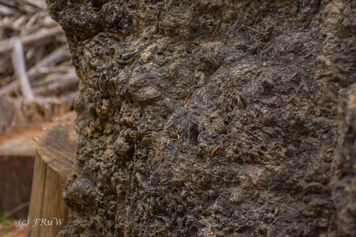 Gerolsteiner Felsenweg (49)