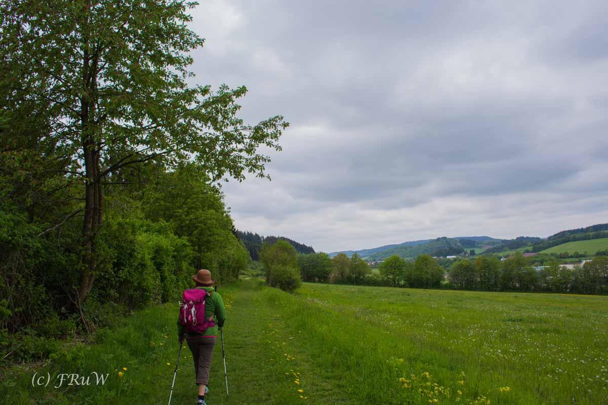 Gerolsteiner Felsenweg (81)