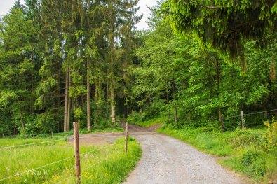 Liederweg_Lindlar (98)