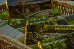 BesenwagenBloggerwandernWesterwald (216)