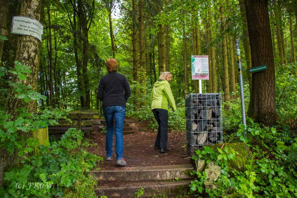 BesenwagenBloggerwandernWesterwald (35)