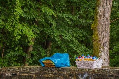BesenwagenBloggerwandernWesterwald (57)