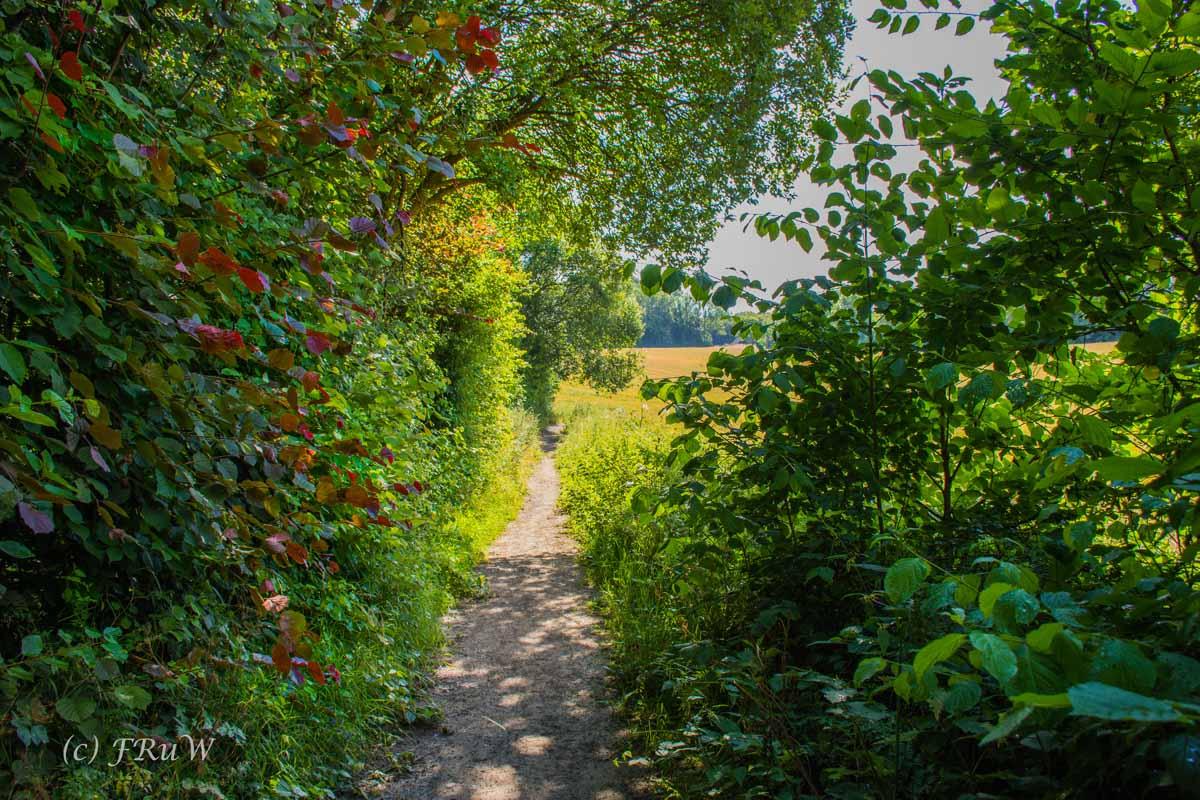 Gruiten - Schöller - Grube 7 - Gruiten Dorf