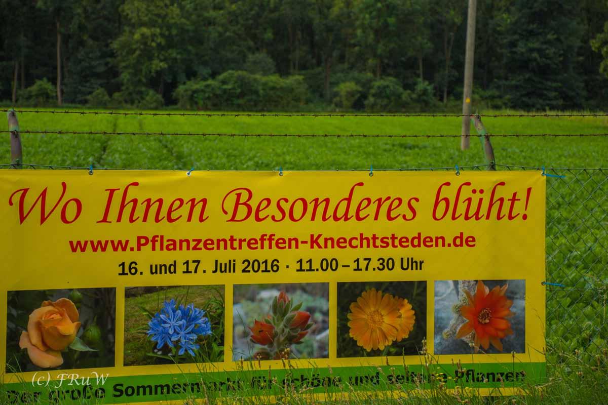 Kloster Knechtsteden_und_Tierpark_0380