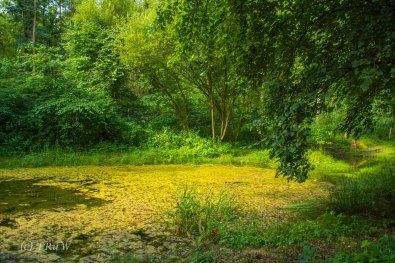 Kloster Knechtsteden_und_Tierpark_0395