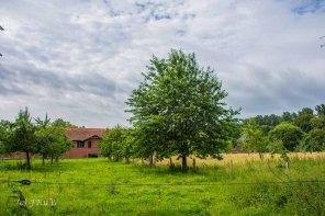 Kloster Knechtsteden_und_Tierpark_0418