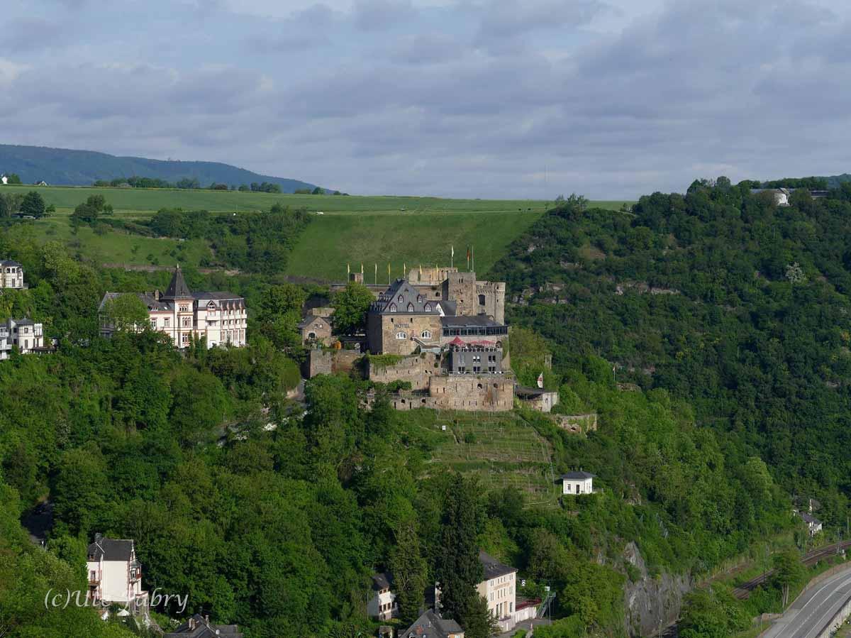 Vollansicht Burg Rheinfels