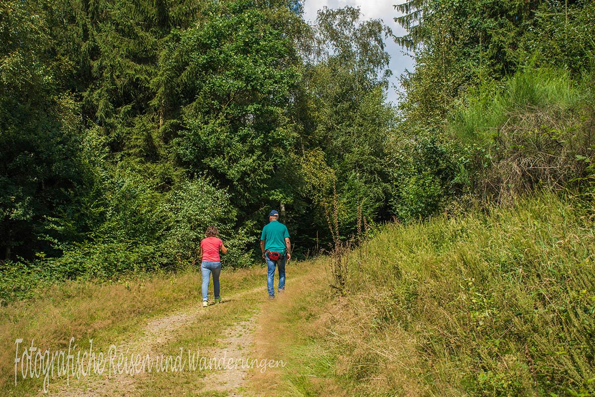 BergischerStreifzugBaumweg (102)