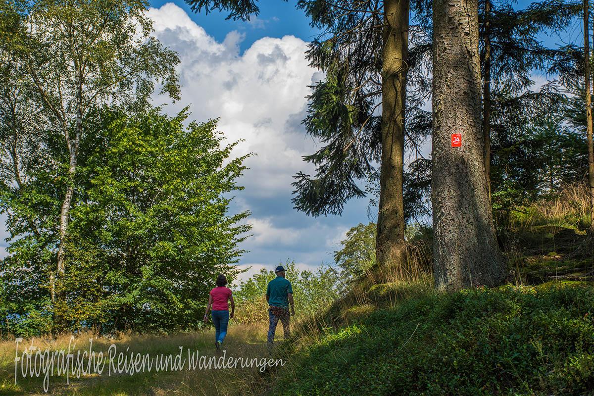 BergischerStreifzugBaumweg (103)