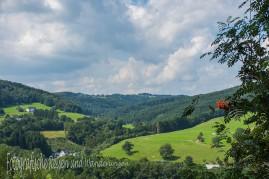 BergischerStreifzugBaumweg (116)