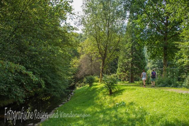 BergischerStreifzugBaumweg (12)