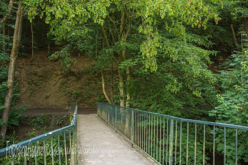 BergischerStreifzugBaumweg (20)
