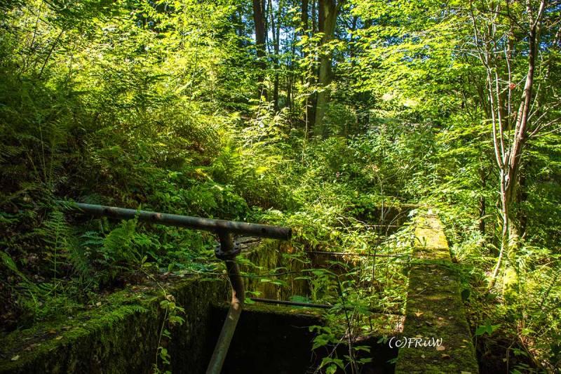 BergischerStreifzugBergbauweg-(170)