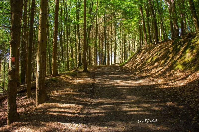 BergischerStreifzugBergbauweg-(53)