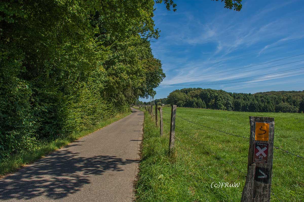 BergischerStreifzugBergbauweg-(68)