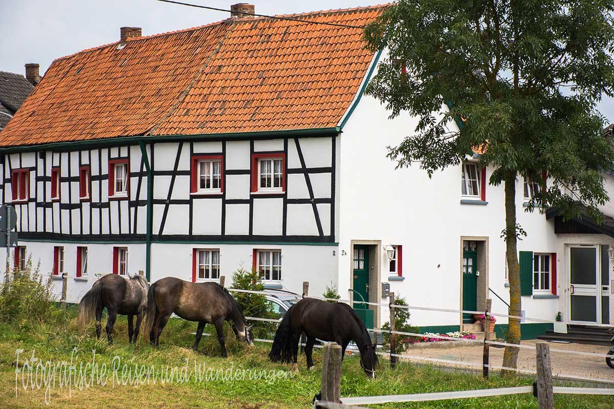 Katzensteine_SchavenerHeide (63)