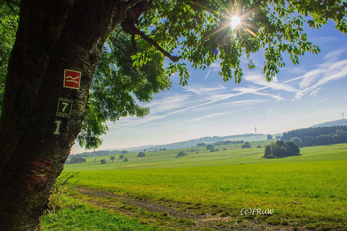 fuchskaute_erlebnisschleife_westerwald-18