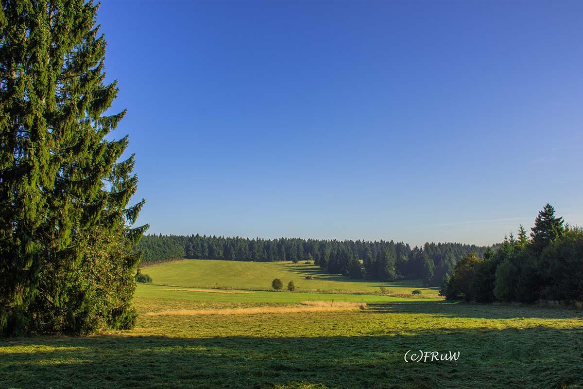 fuchskaute_erlebnisschleife_westerwald-6