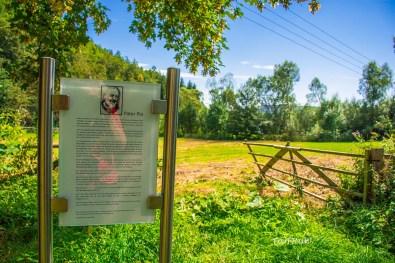 geologischerrundwegduedinghausen-90