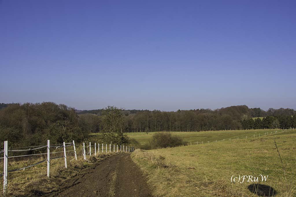 dunntalsperrewanderweg-45-von-109