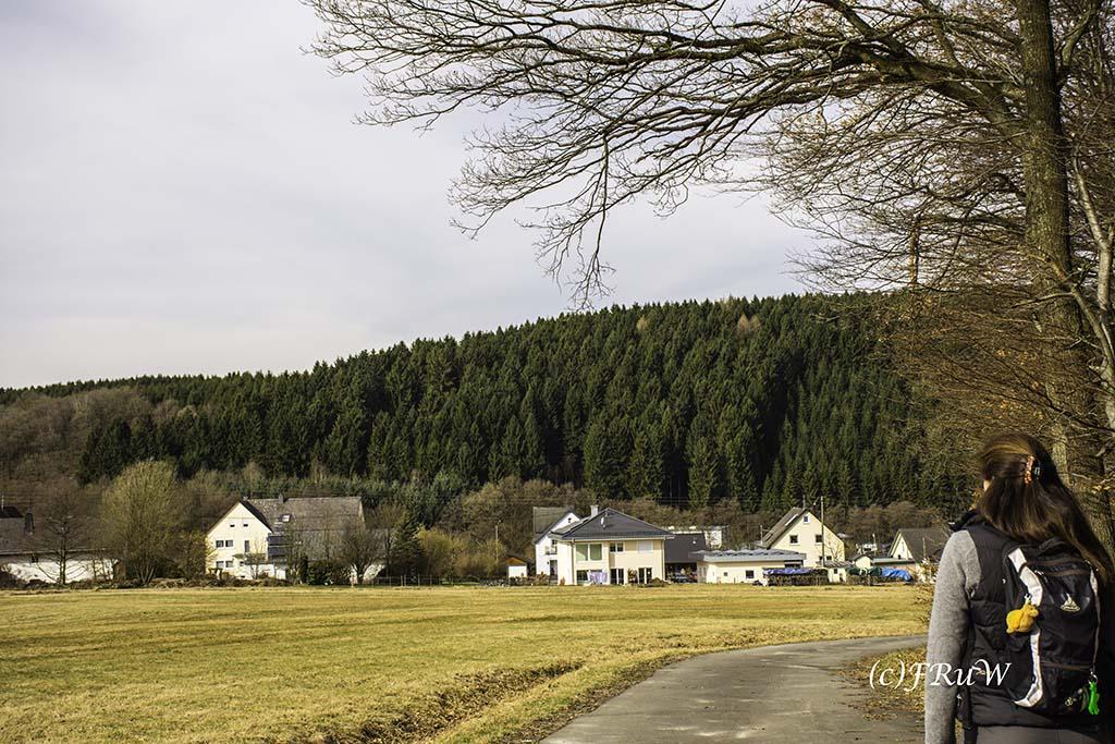 Elbbachtal_Elkenroth (35)