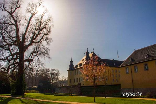SchlossDyck (110)