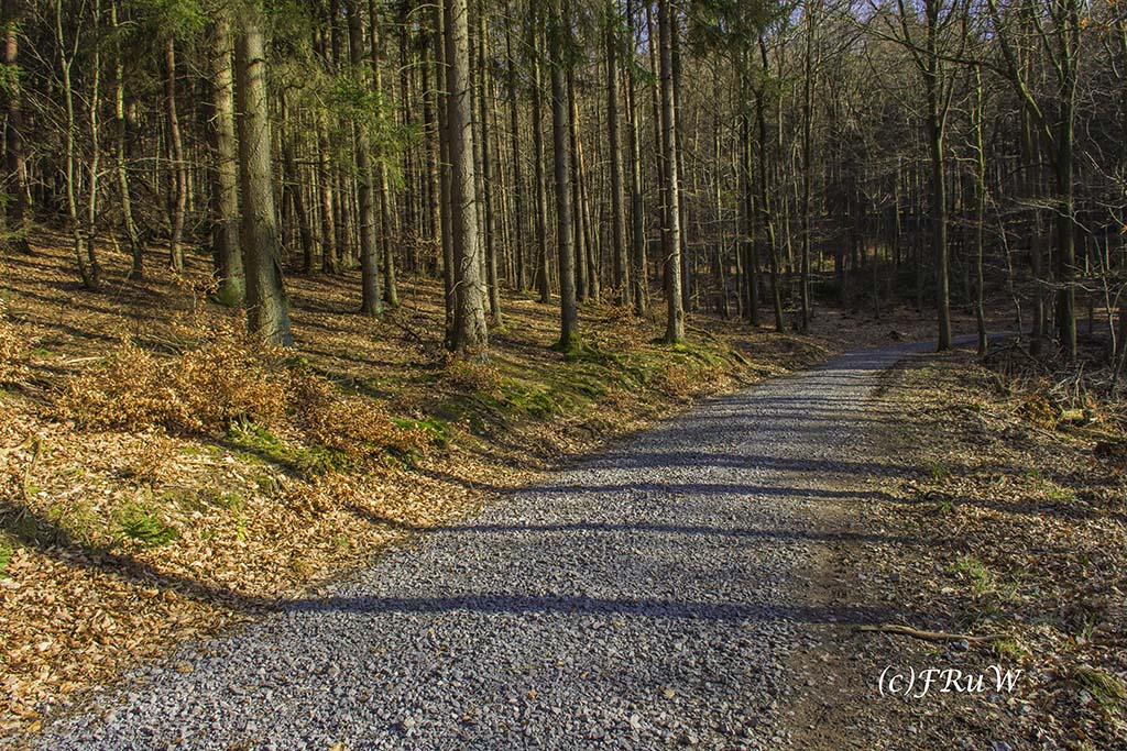 Eisenweg_No5 (146).jpg