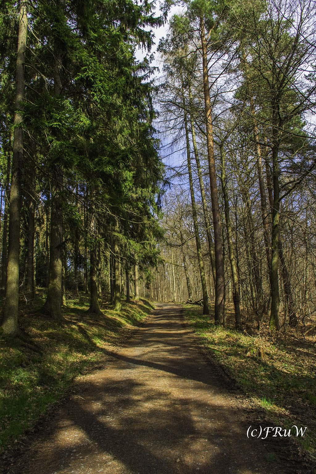 Eisenweg_No5 (38).jpg