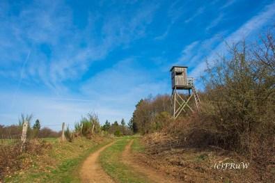 KirchwaldPanoramaweg (21)