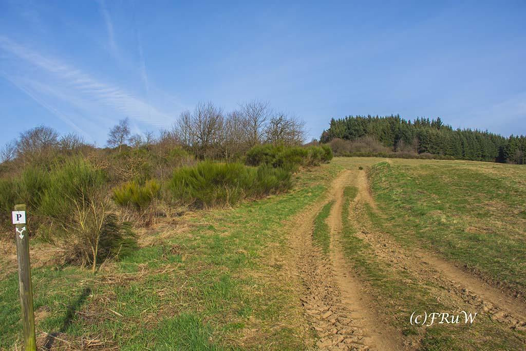 KirchwaldPanoramaweg (4)