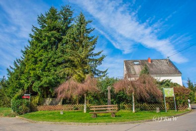KirchwaldPanoramaweg (47)