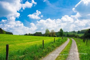 Wiesen, Wälder, Asphalt, Landwirtschaft, Sommer