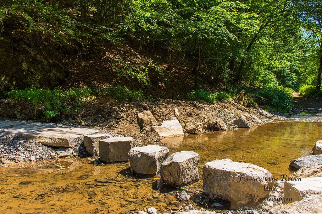 Naturdenkmal Sechs Eichen-Trittsteine in der Nette