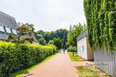 Tippeltour-Rund-um-Leichlingen (75)