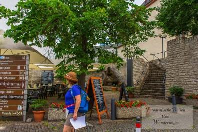 Wandermarathon Hunsrück (78)