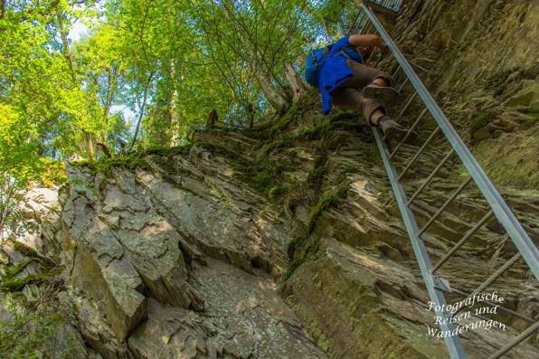 Lange Leiter auf der Traumschleife Layensteig Strimmiger Berg