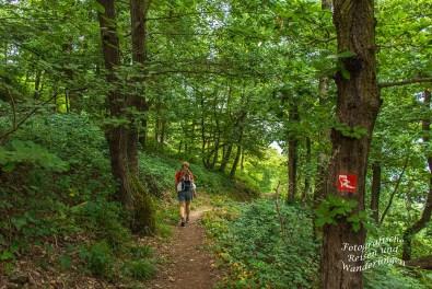 Schwede-Bure-Tour (215)