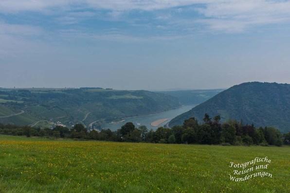Noch einmal Blick auf den Rhein
